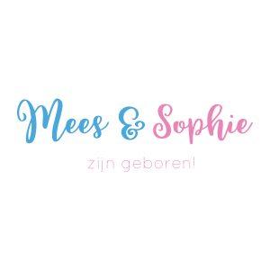 Baby-/geboortesticker | Tweeling is geboren! | Blauw Roze