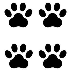 Dierenstickers | Kattenpoot | Cover